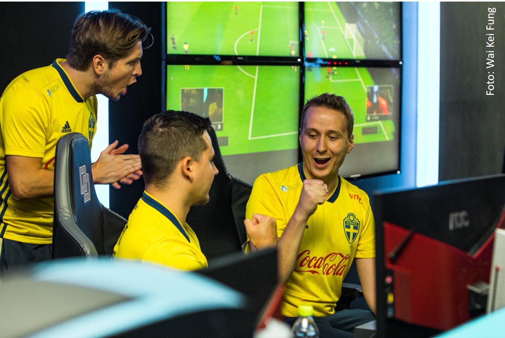 Ownit stolt sponsor av svenska FIFA landslaget!